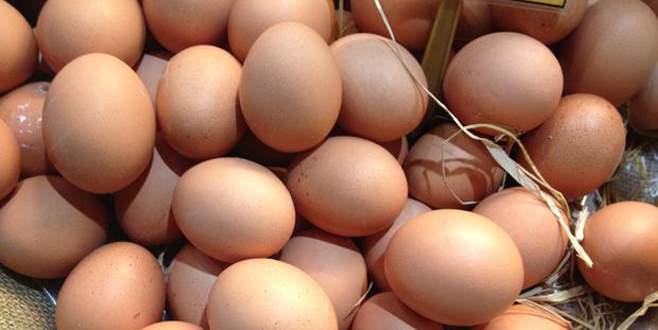 Sahte köy yumurtasına dikkat