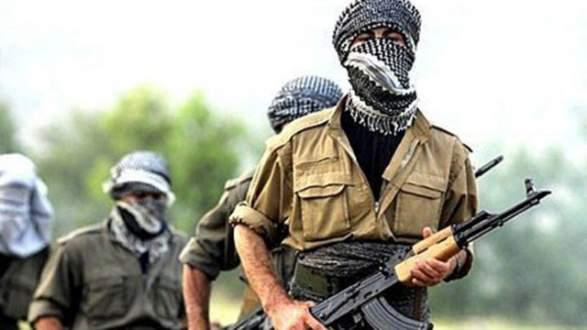 PKK'lılar 3 sağlık görevlisini bir saat rehin aldı