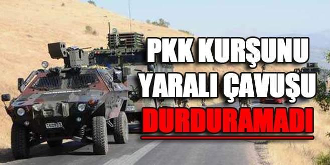 PKK kurşunu yaralı çavuşu durduramadı
