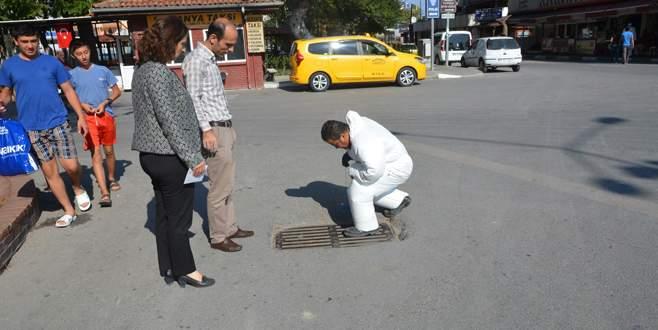 Mudanya'da rögarlarda ilaçlama