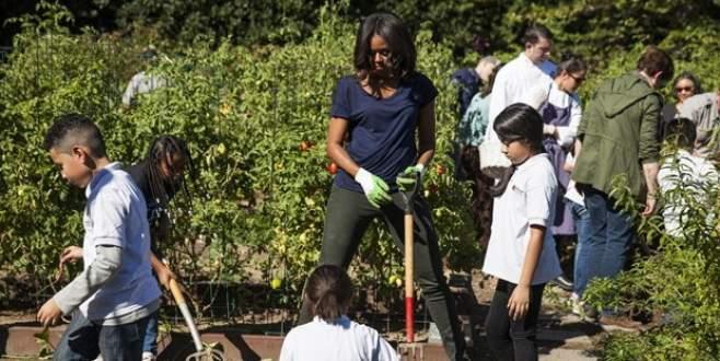 Beyaz Saray'da hasat zamanı