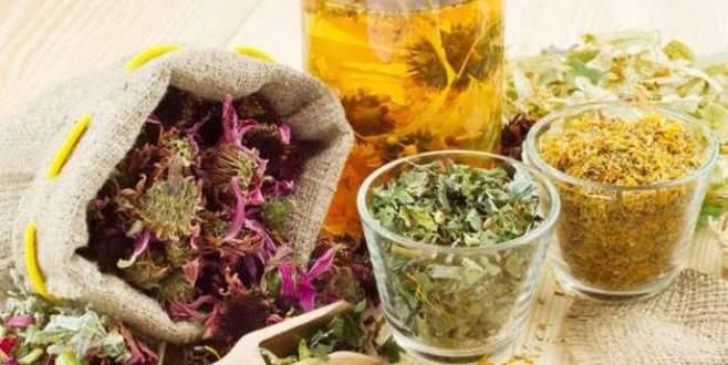 Yeni gelir kapısı tıbbi bitkiler