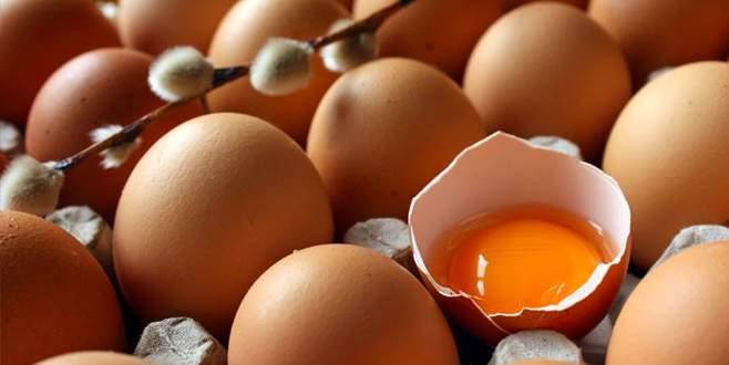 Yumurtada hedef büyüdü
