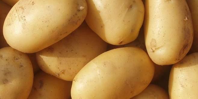 Patates bu yıl tüketicinin yüzünü güldürüyor