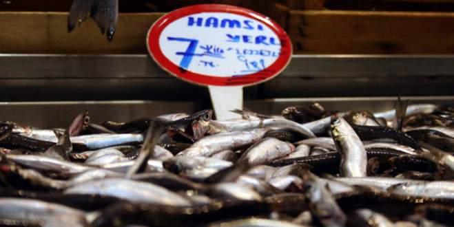 Balık tezgahları ucuz hamsi ile şenlendi