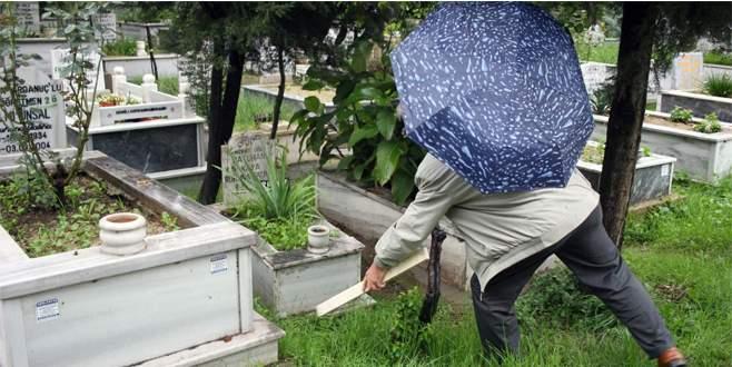 Mezarlıkta 10 günlük bebek bulundu