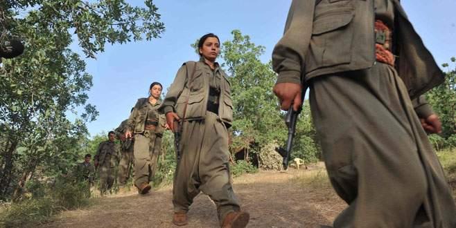 Şırnak'ta 10 PKK'lı daha…