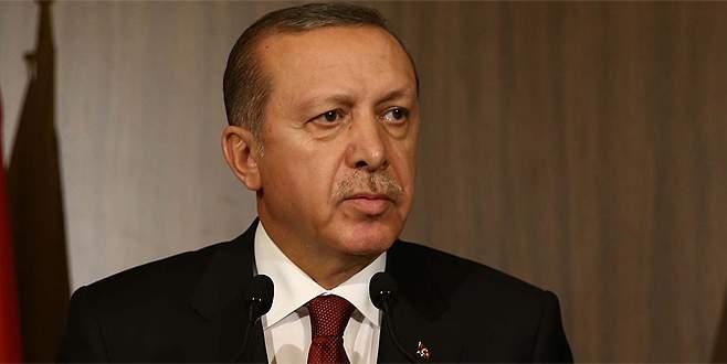 Erdoğan ve Hollande telefon görüşmesi yaptı