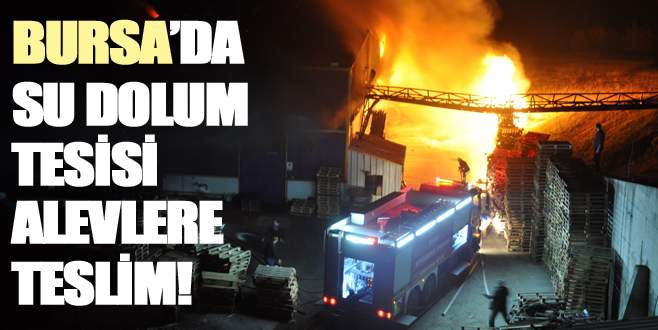 Bursa'da 40 milyon TL'lik tesis kül oldu!
