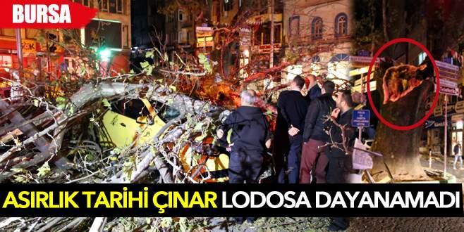 Bursa'da lodos dehşeti!