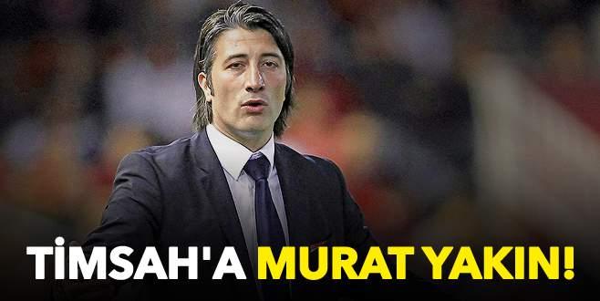 Timsah'a Murat Yakın!