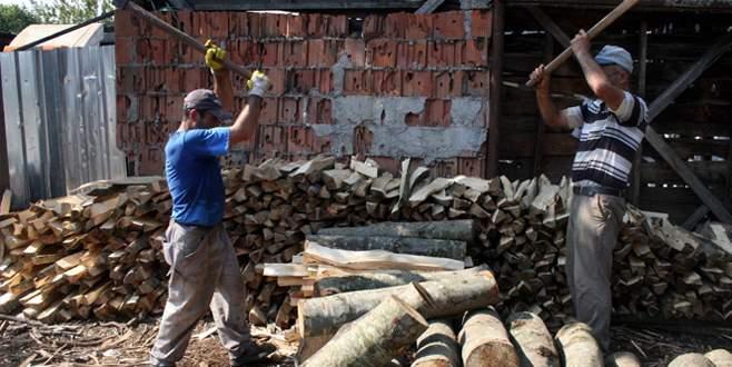Gaz korkusu vatandaşa odun depolatıyor