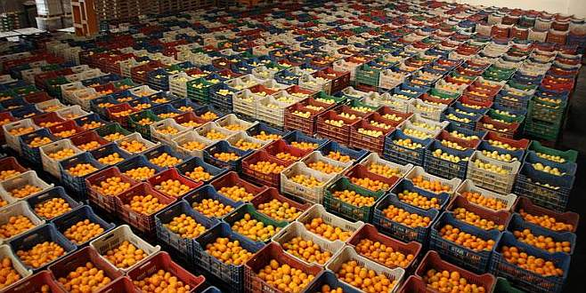 'Yaş sebze meyve sektöründeki panik havası dağıldı'