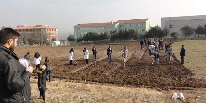 Öğrencilere hobi bahçesi