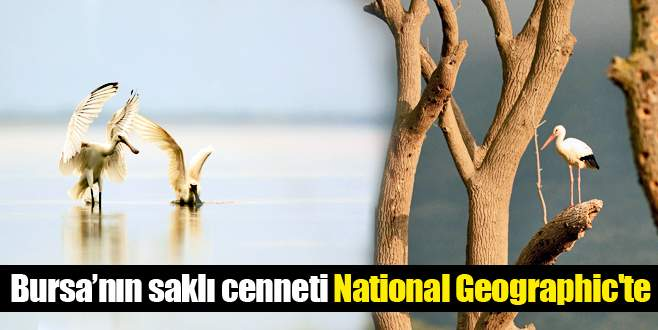 Saklı cennet National Geographic'te