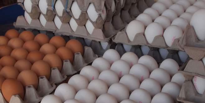 Yumurtada yeni dönem