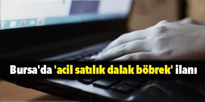 Bursa'da 'acil satılık dalak böbrek' ilanı
