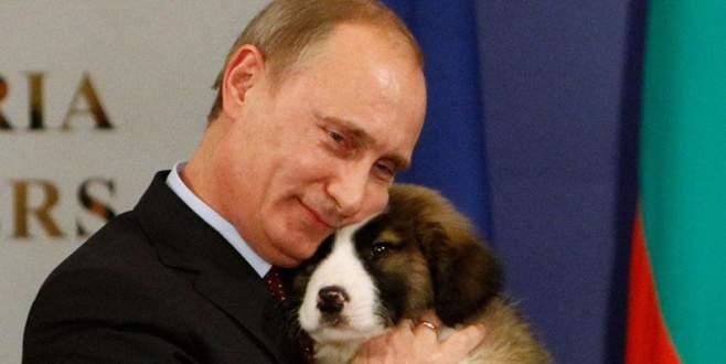 'Putin'e inat' vatandaşa yarı fiyatına!
