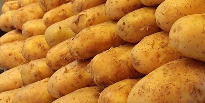 Patates fiyatında büyük düşüş