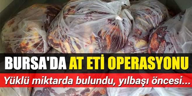 Bursa'da at eti operasyonu
