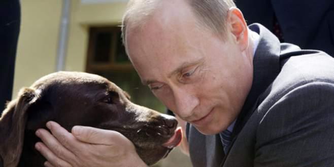 Putin küçük kıza köpek hediye etti