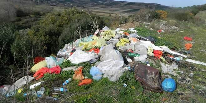 Mudanya'da zeytinlikleri çöpe çevirdiler
