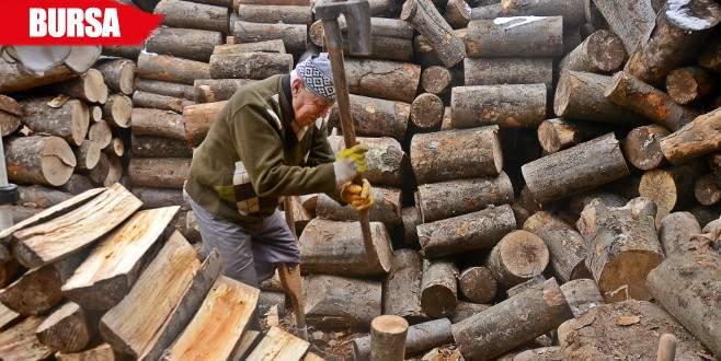 Engeline rağmen günde 3 ton odun kırıyor