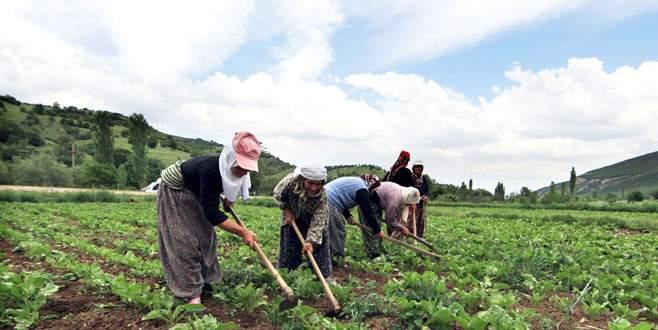 Çiftçi ÇKS için kolaylık bekliyor