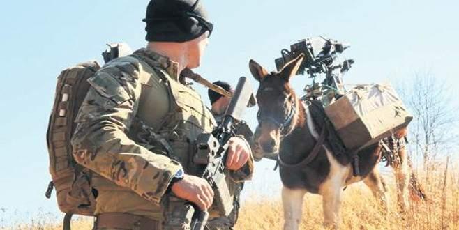 PKK ile mücadelede katırlı timler kurulacak