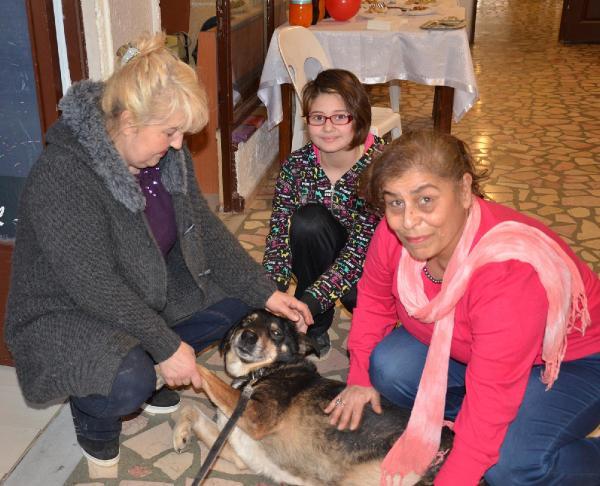 Köpeklerin tedavi için kermes düzenlediler