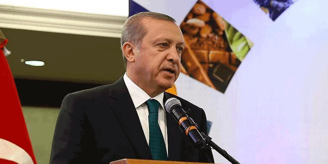 Erdoğan: 'Suriye'deki sorun çözülmeden…'