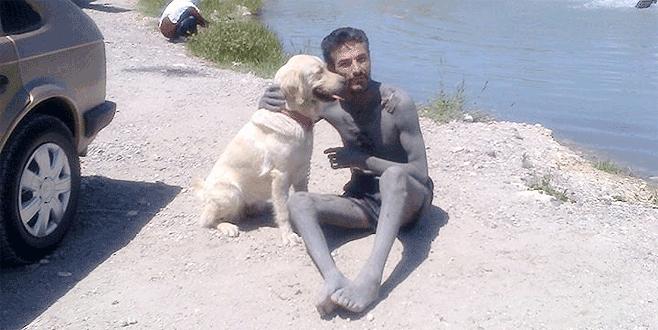 Bursa'da bu köpeği bulana ödül