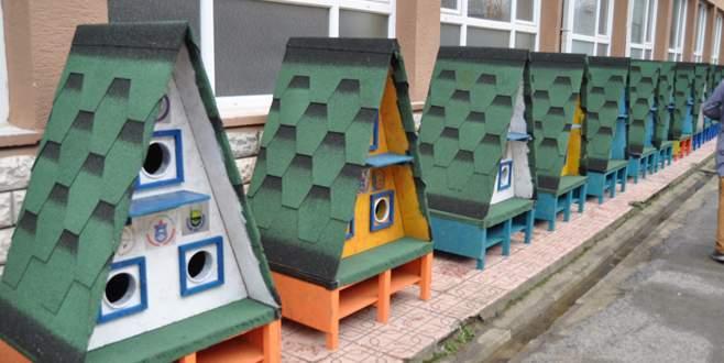 Bursa'da kediler 'ev'lendi