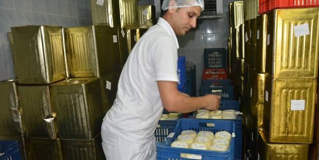 Bursa'da organik süt ve et kapış kapış