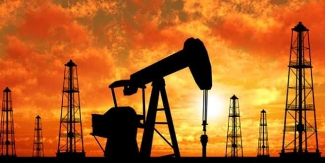 Dört ülkeden petrol üretimini sabitleme kararı