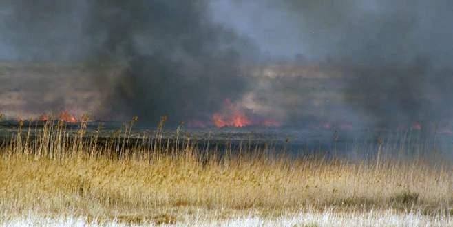 Göksu Deltası'ndaki yangın söndü