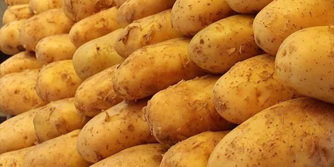 Elde kalan patateste ihracat sevinci