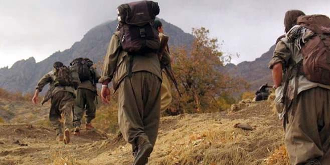 PKK'nın kilit ismi yakalandı