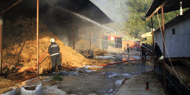 Bursa'da ahırda çıkan yangın TIR'ı ve samanları kül etti