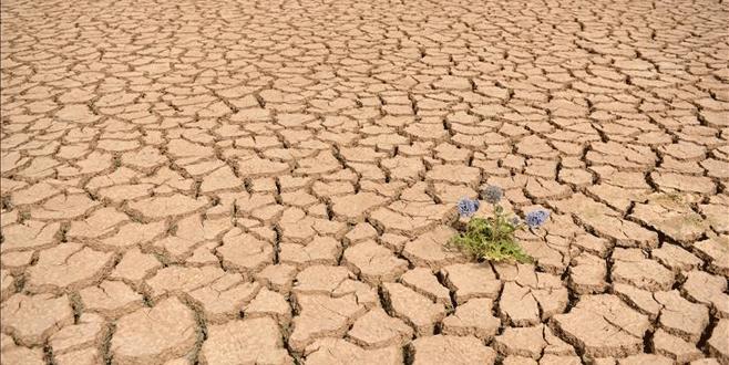 El Nino'nun etkileri daha da artacak!
