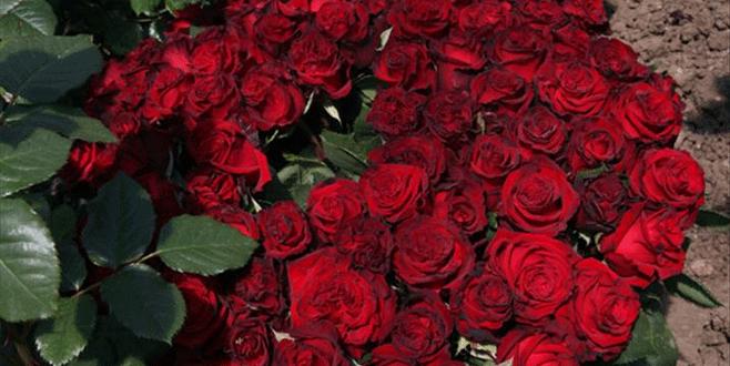 Çiçekçilerin gözü Anneler Günü'nde