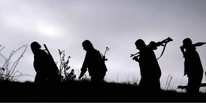Bir üst düzey PKK'lı daha öldürüldü