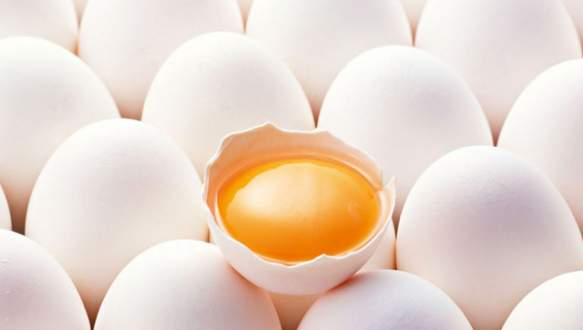 Yumurta ihracatında sert düşüş