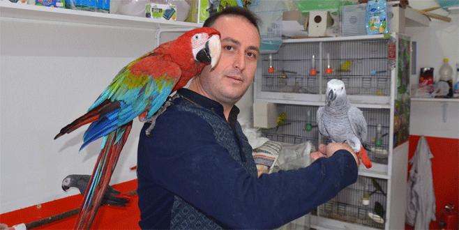 '10 yılda 10 binden fazla papağan eğittim'