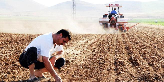 Genç çiftçiler hibe başvuruları bugün sona eriyor