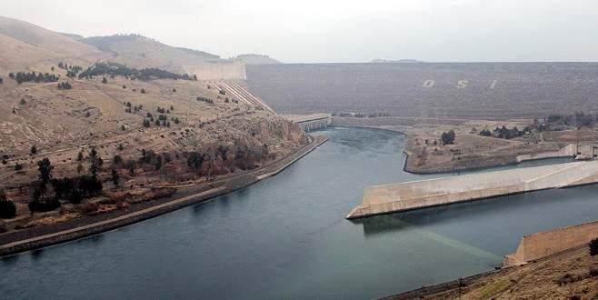 'Bursa'da toplam 175 bin balık baraj ve göletlere bırakıldı'