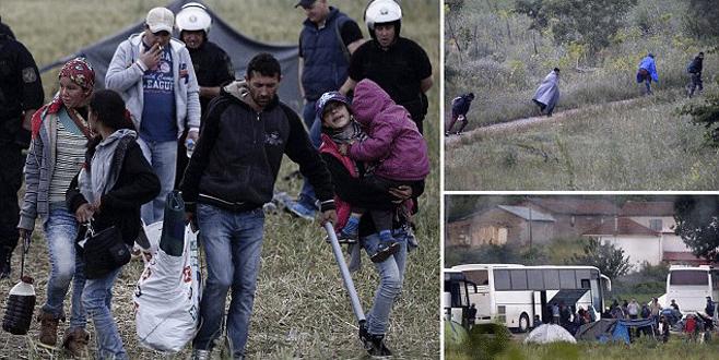 Sığınmacılara şafak operasyonu