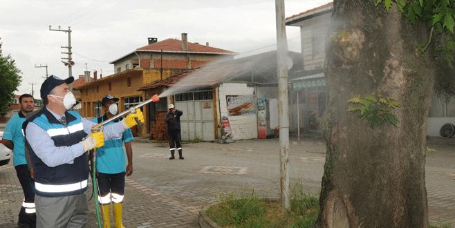 Mustafakemalpaşa'da haşereyle mücadele