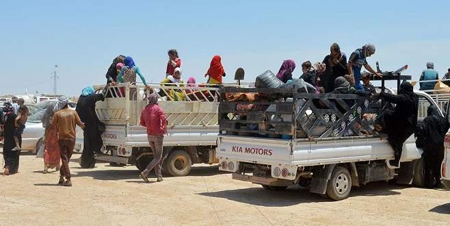 Felluce'de 3 bin 708 aile göç etti