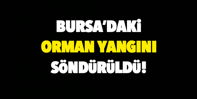 Bursa'daki orman yangını söndürüldü!